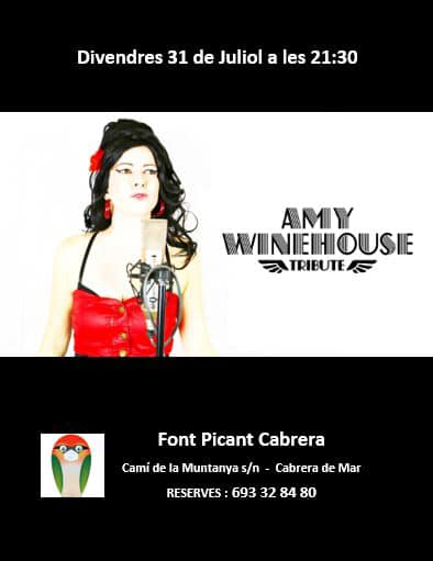 Cartel concierto Amy Winehouse Tribute